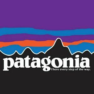 Patagonia items